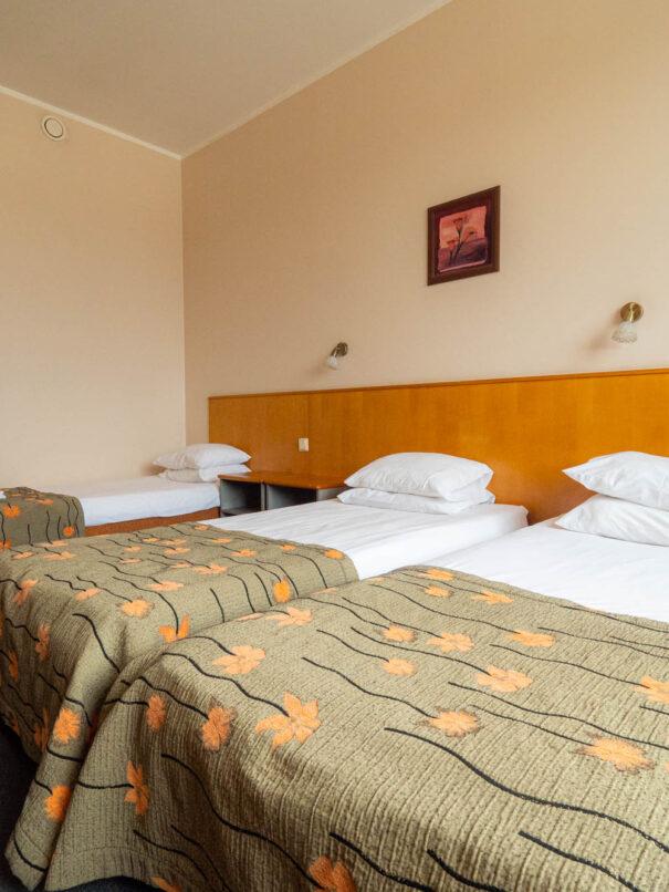 Centrumi hotelli standardtuba 6